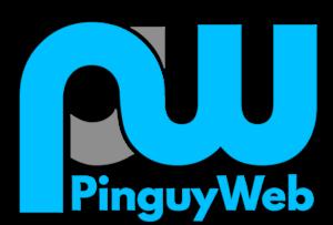 logo-agenzia-web-udine-pinguyweb